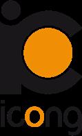Instituto para la Calidad de las ONG (ICONG)